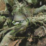 Bokes-chamber music